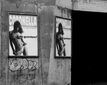 136-cotonella-136-2004_570_08