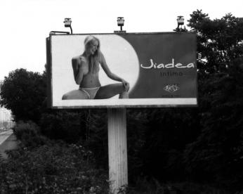 193-jiadea-193-2005_654_07